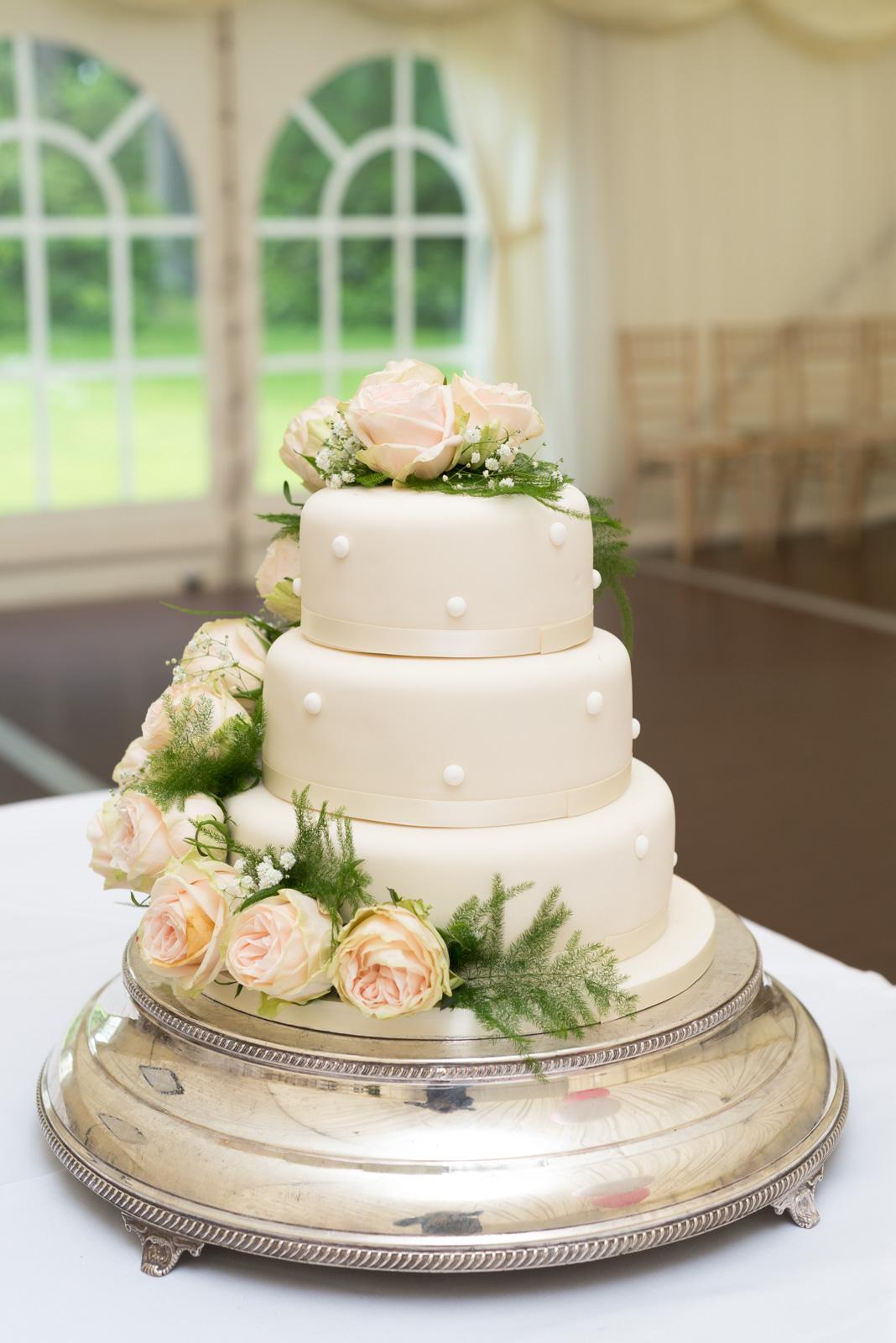 Elegant wedding cake 1