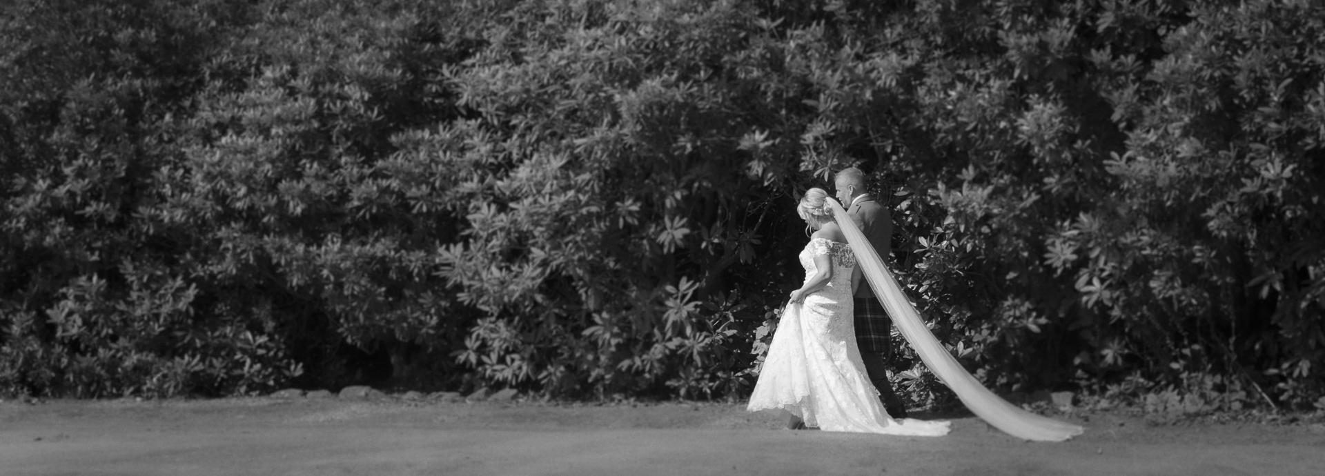 A wedding walk through the woods